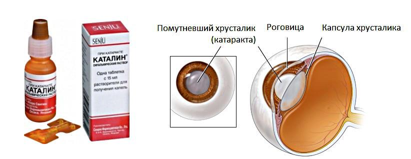 каталин глазные капли инструкция цена производитель